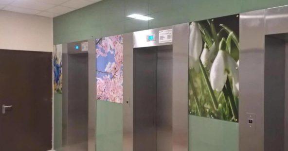 ЖК ЗимаЛето - панно в лифтовом холле